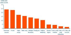 Blasius Info - IT Szótár/Internet/Válalkozások internet által igénybe vett területei. - weboldal - pendrive - szerkesztés - honlap - készítés - oldalak - Wifi - banner - html - weblap