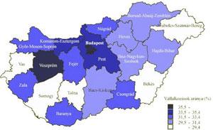 Blasius Info - IT Szótár/Internet/Weboldallal rendelkező vállalkozások arányai Magyarországon. - szerkesztés - készítés - honlap - Wifi - weblap - banner - oldalak - pendrive - weboldal - html